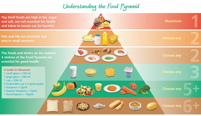 new-food-pyramid-2012